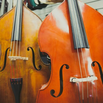 Double Bass Rental