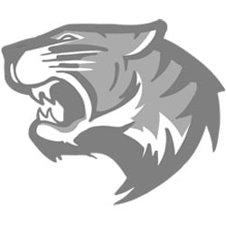 Briscoe Middle School Mascot