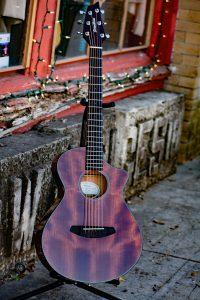 Breedlove Guitar Showcase
